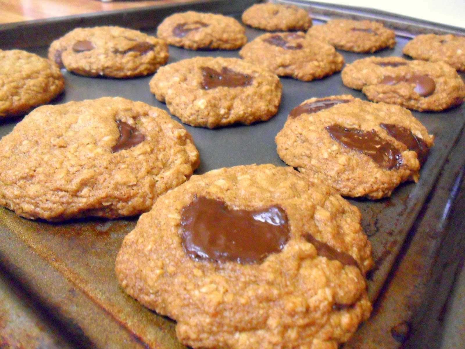 Chocolate Chunk Oatmeal Coconut Cookies Recipe — Dishmaps