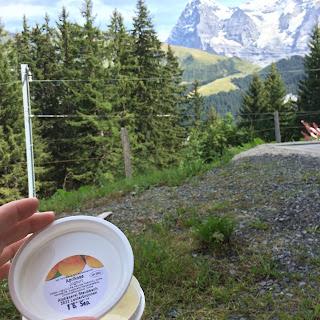 Apricot Yogurt in Switzerland