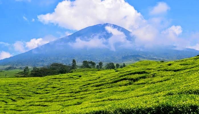 liburan ke wisata alam pegunungan indonesia