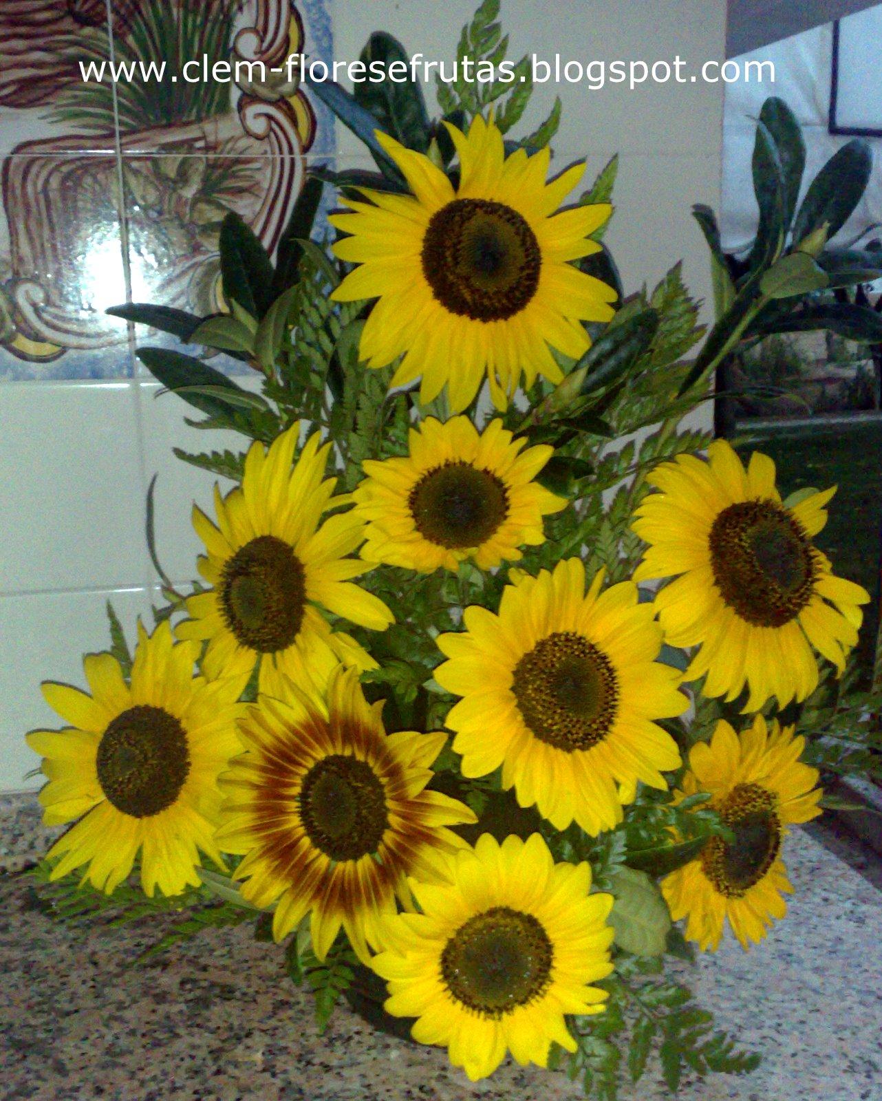 Fotos De Flores Girassois - flores na entrada da recepção – Foto de Pousada dos