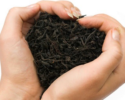manfaat daun sirih hitam,daun teh tehan,daun teh hijau,teh jati cina,teh jati belanda,teh untuk rambut,teh untuk wajah,teh basi,