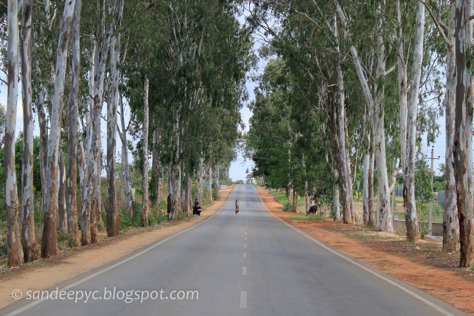 The road to Nandi Hills