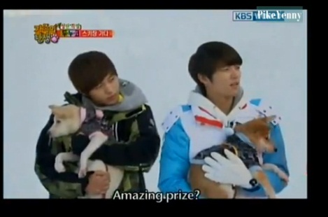 The Birth Of A Family 111203 Ktvshownet Watch Korean Shows And | Dog