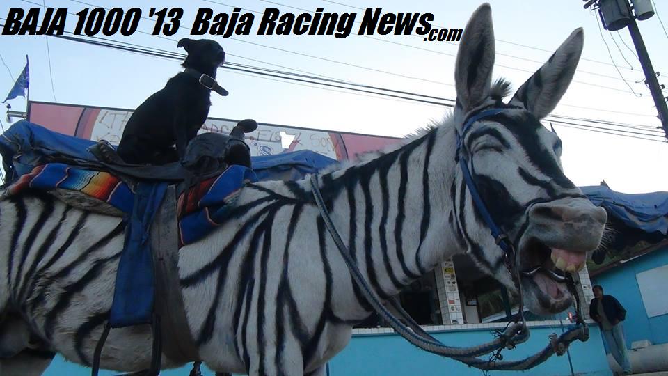 BAJA 1000 2013 FACTSHEET Baja Racing News LIVE!