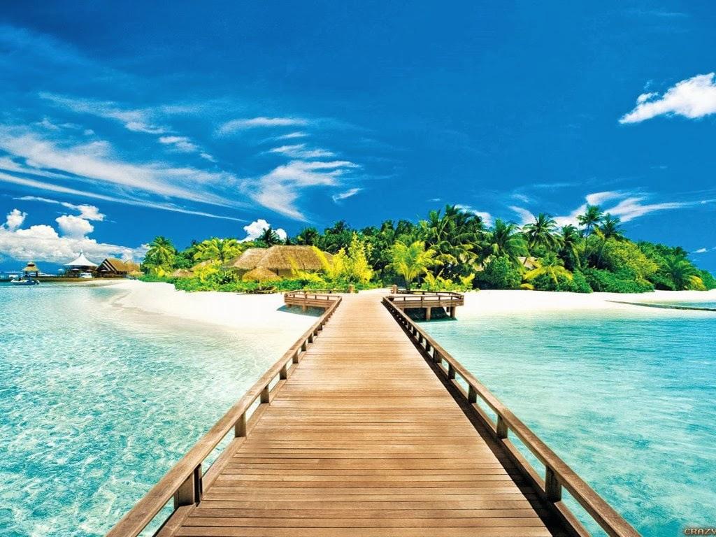 Must see   Wallpaper Home Screen Summer - nature+summer+beach+(10)  Picture_472943.jpg