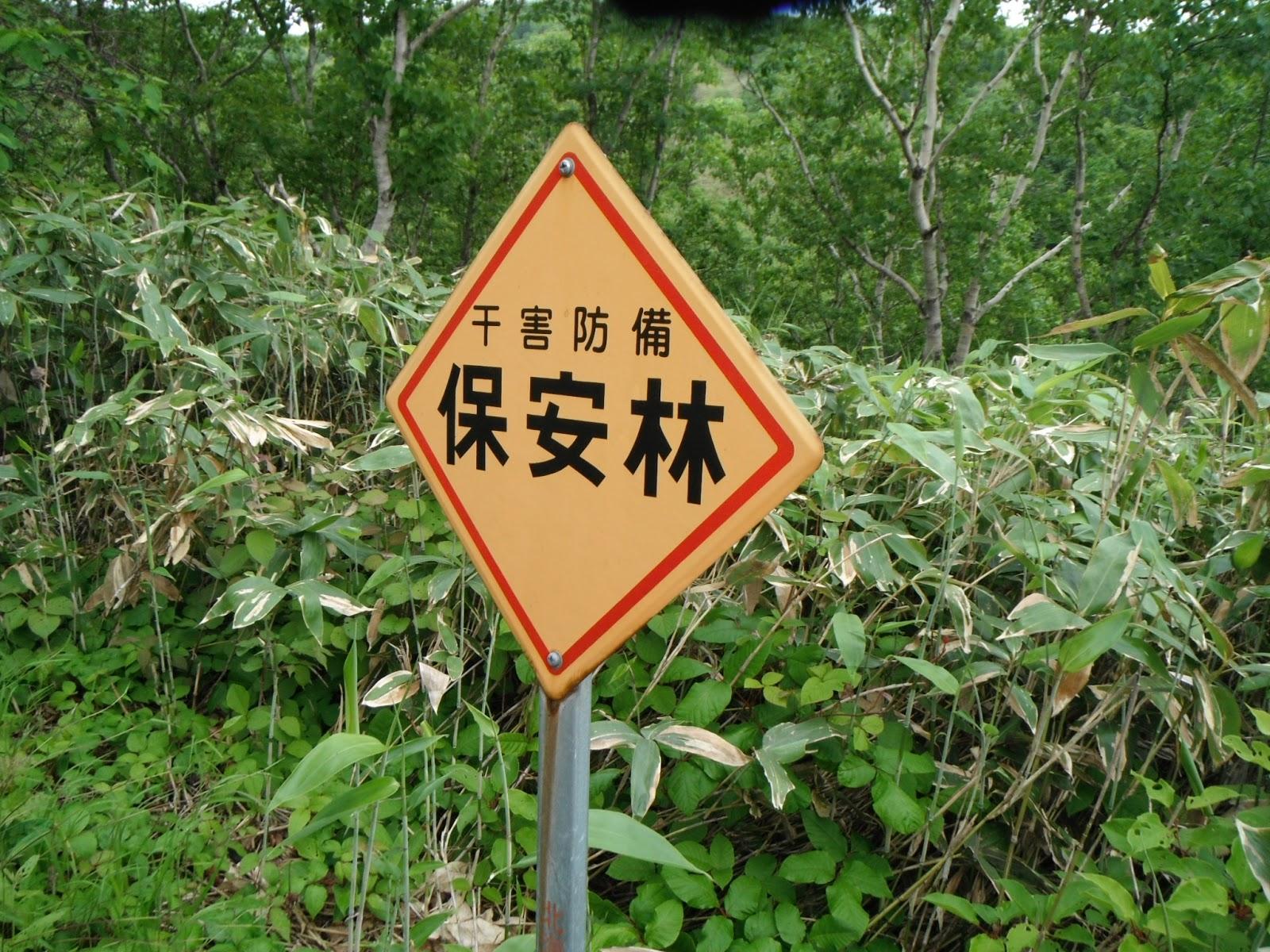 山旅三昧: 礼文岳490mの最新情報...