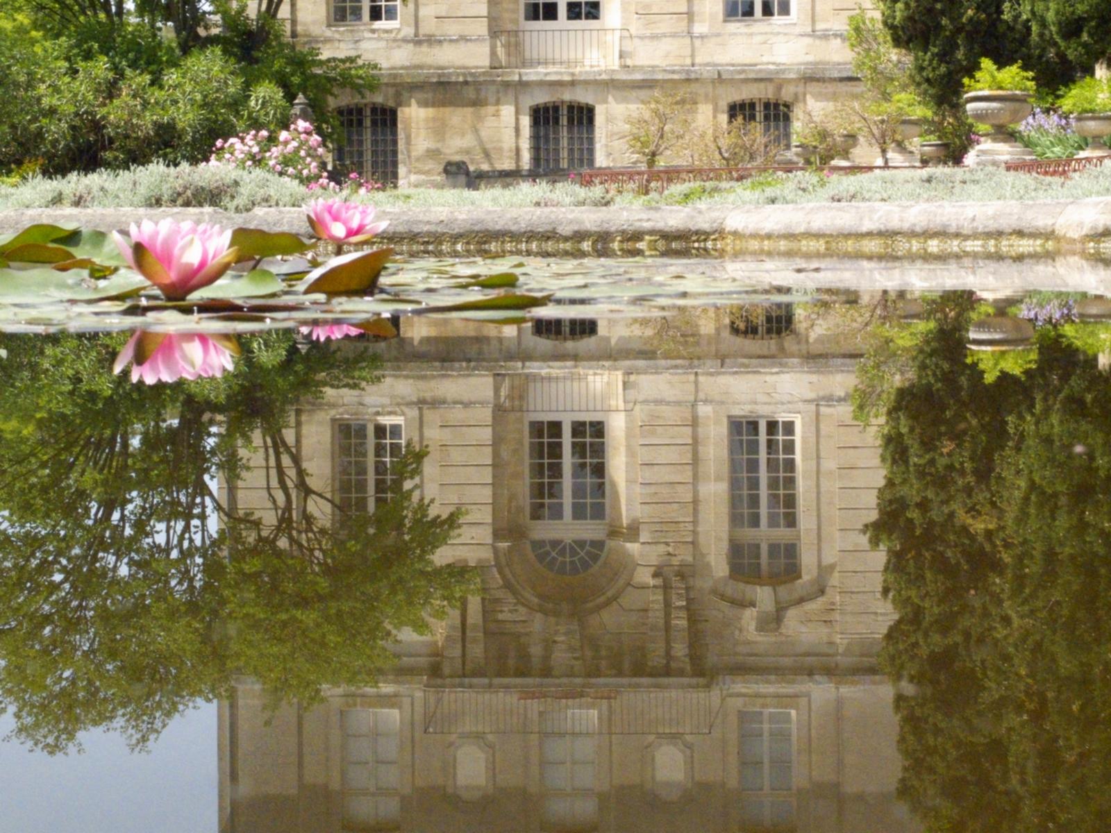Avignon in photos les bassins de l 39 abbaye for Entretien jardin villeneuve les avignon