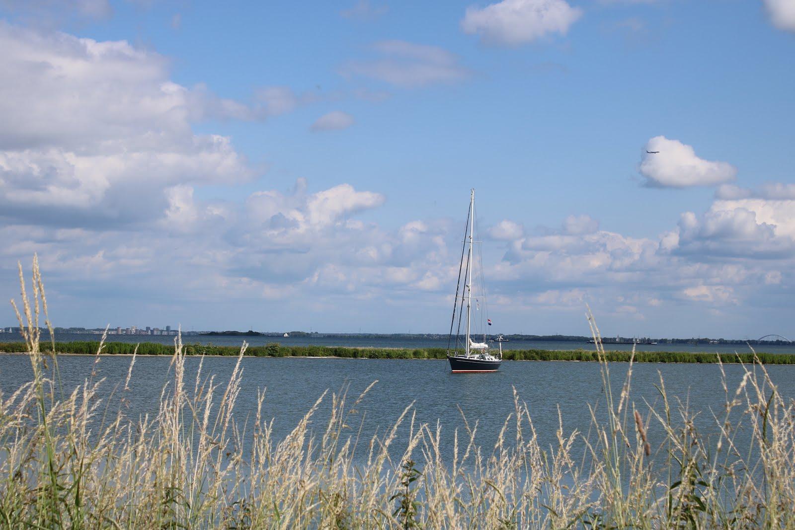 IJsselmeer-scharreltocht