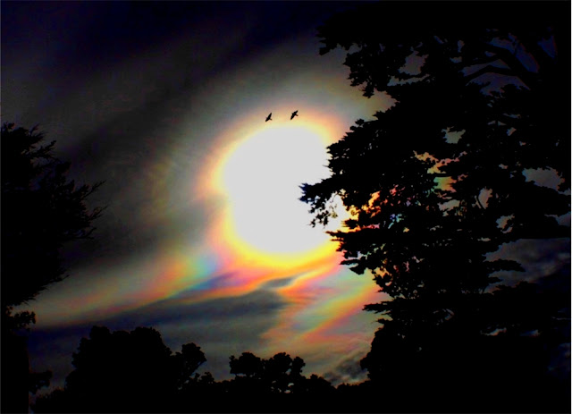 Cloud Iridescence Seen On www.coolpicturegallery.us
