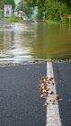 povodně UL