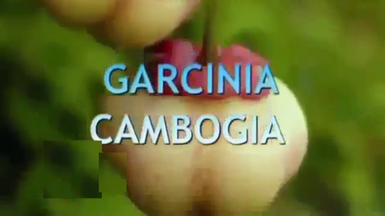How Does Garcinia Cambogia Keep Fat At Bay
