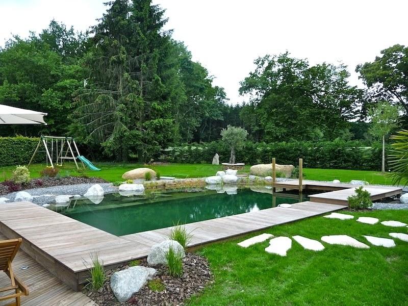 Les abords de piscine ce qu 39 il faut retenir for Prix piscine biologique