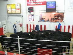 Smithfield Livestock Auction Barn