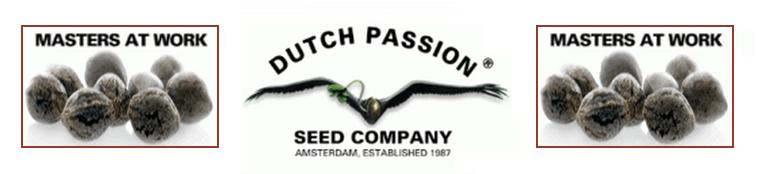 Dutch Passion Cannabis Seeds