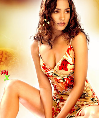 Lara Dutta Pretty Wallpaper for Don 2