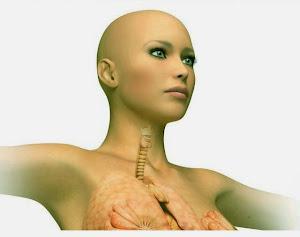 transplantasi, Transplantasi Kepala Manusia,