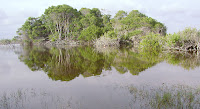 The Wetlands, Isabela Island, Galapagos