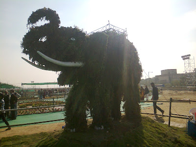 elephant from red bhaji plant