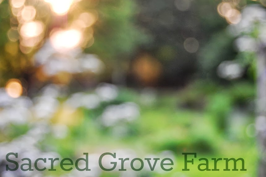 Sacred Grove Farm