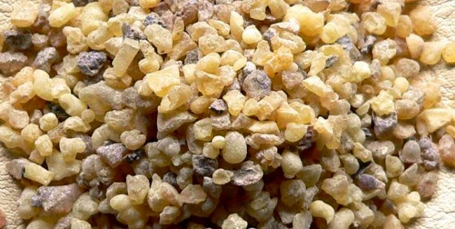 Got Health Problems? Drink Frankincense Water. Here is How to Make It