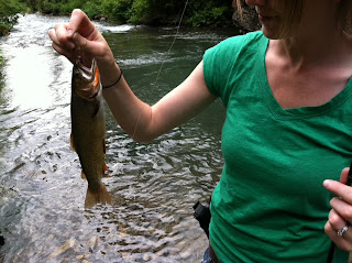 Native Cutthroat Trout