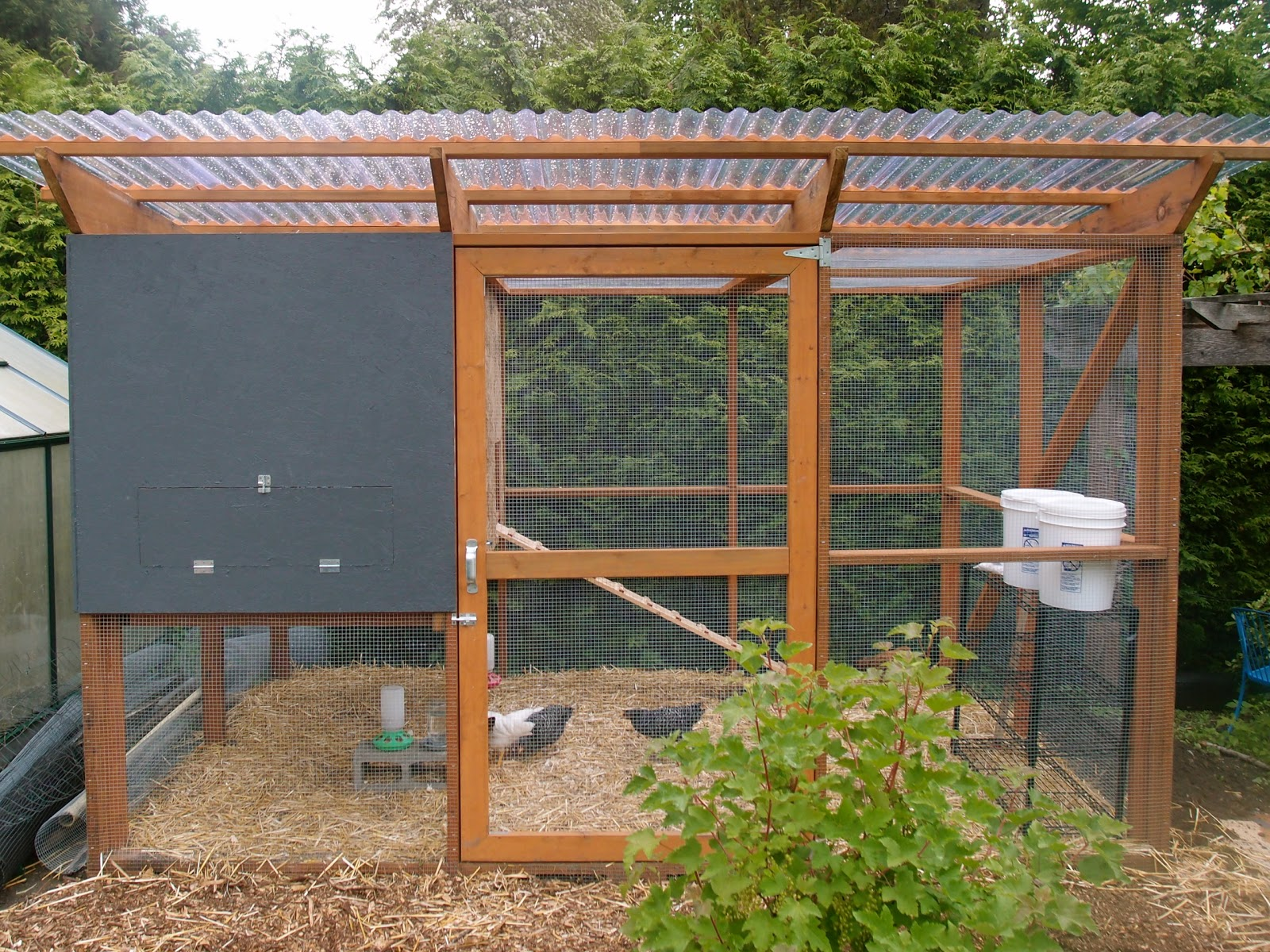 The chicken coop is done enough northwest edible life for Plans for chicken coops