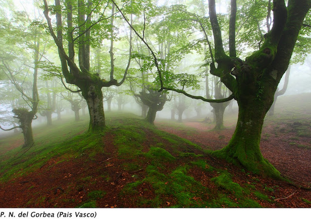 paisajes-fotografias