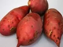 Manfaat Ubi Jalar, manfaat daun ubi jalar, manfaat ubi jalar ungu, khasiat ubi jalar