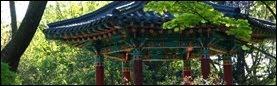 Cultura Coreeana