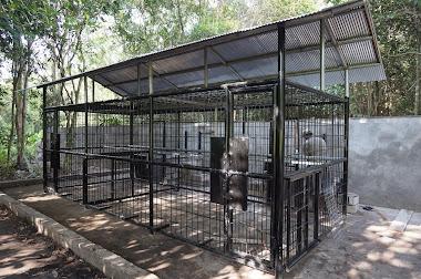 Feeding Cage