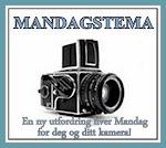 FOTOUTFORDRINGER: