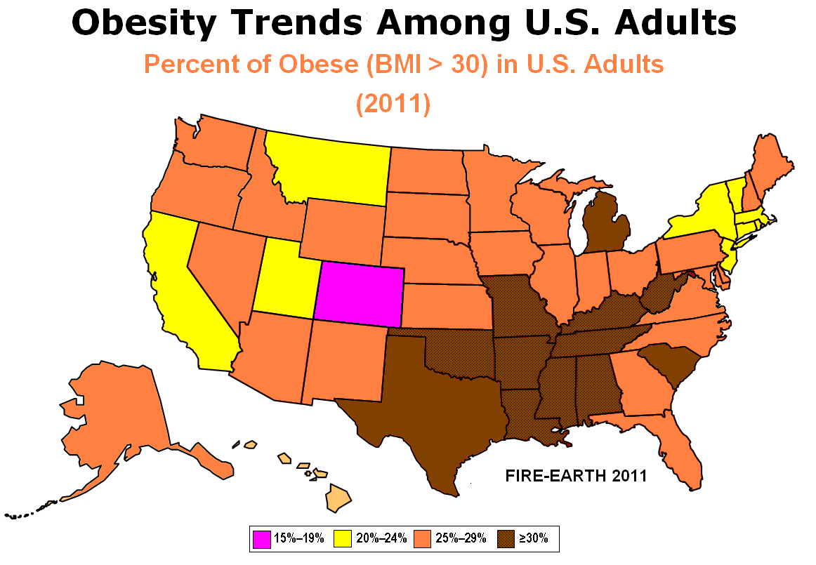 Obesity intervention programs for adults