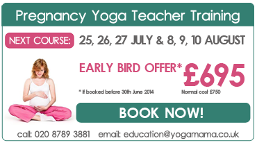 Pregnancy Yoga Teacher Training summer 2014
