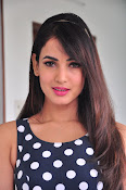 sonal chauhan latest sizzling pics-thumbnail-19