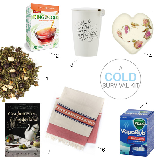 a cold survival kit / sunshineandwhimsy.net