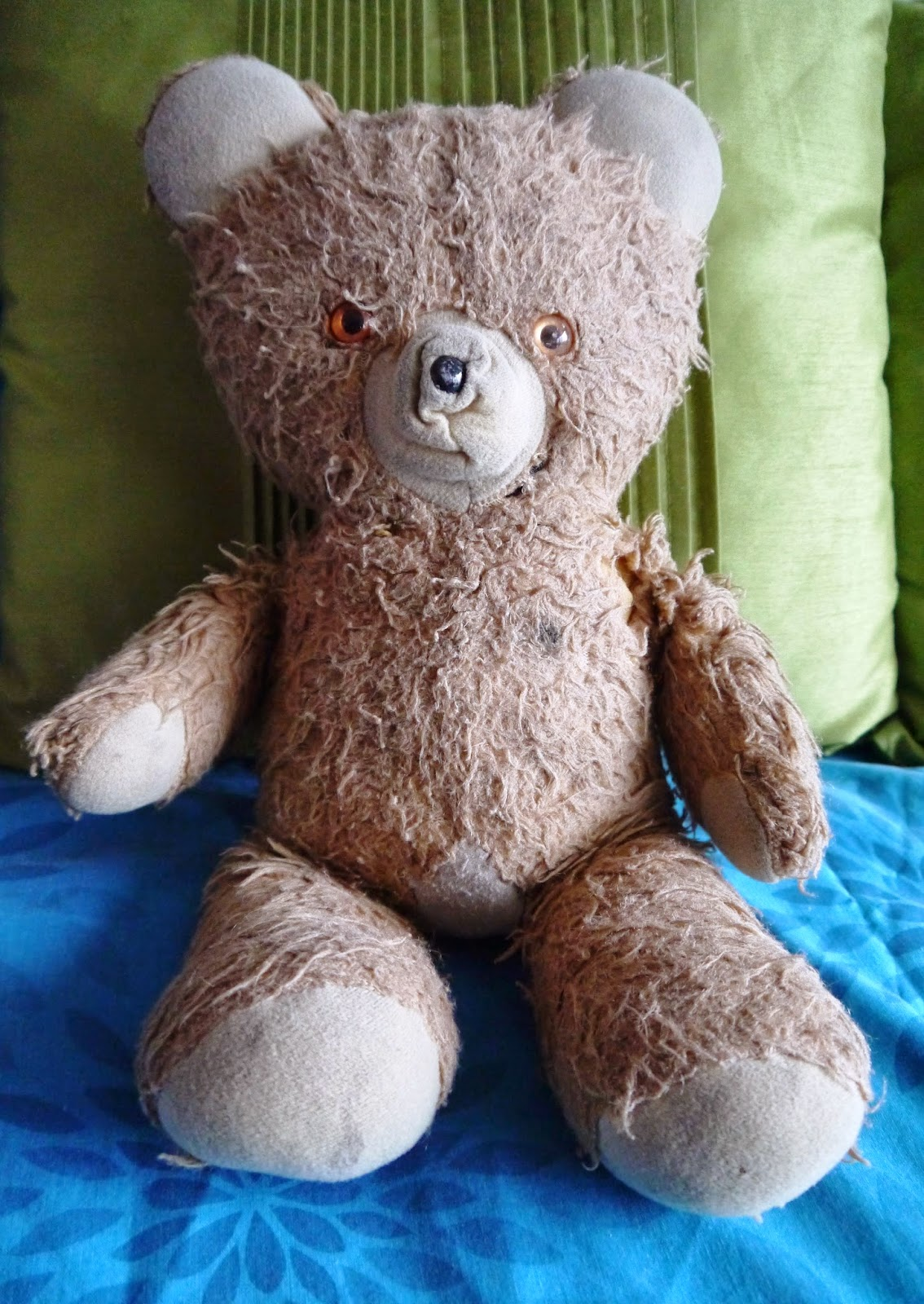 Brown Ted the teddy bear