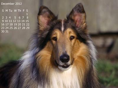 calendar decembrie