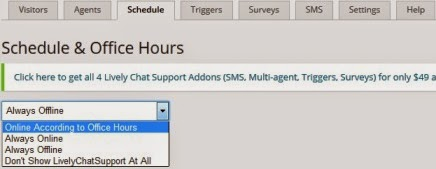 lively chat support schedule setting