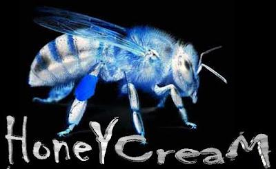 HoneyCream 4.1.1 Custom ROM For Galaxy Y
