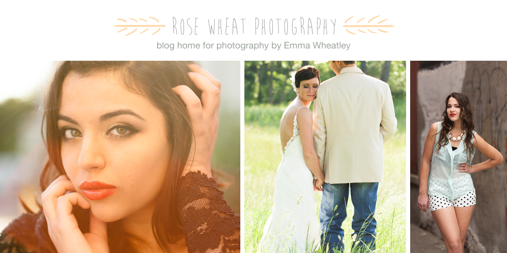 rose wheat photography | blog