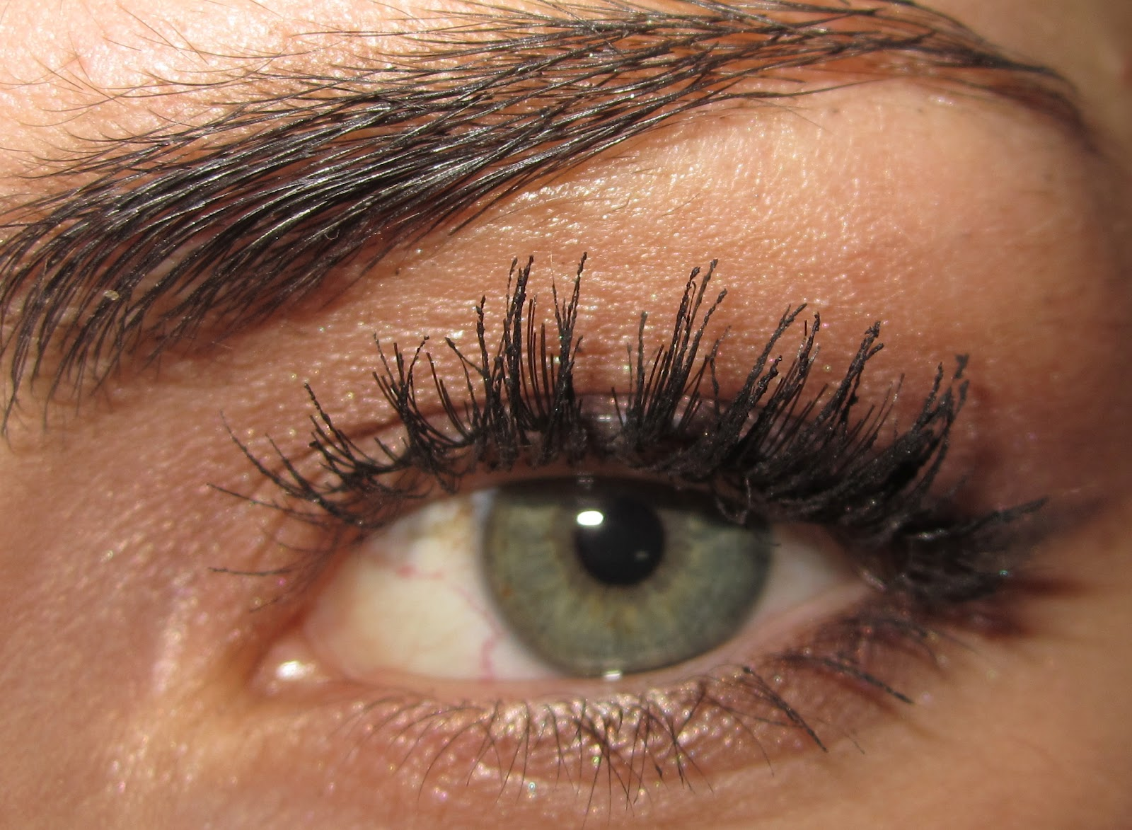 Double Eyelashes Mutation Sh