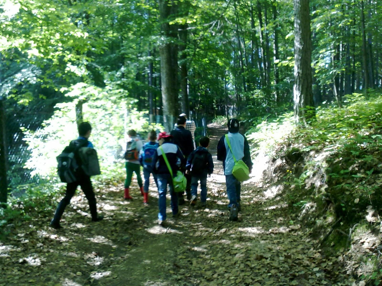Giardino Pietra Corva : Scuola in valle: visita al giardino botanico di pietra corva