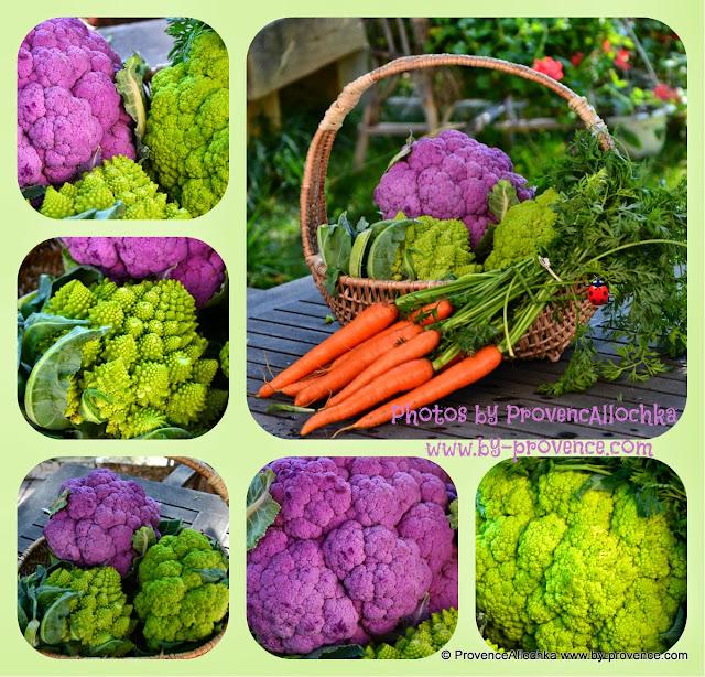 кушайте витамины-цветная капуста