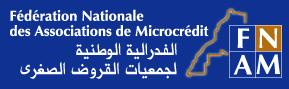 Federation nationale des associations de microcrédit fnam