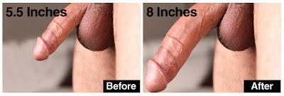 Vimax Oil Pembesar Penis | Pembesar Penis Vimax Canada | Vimax Volume Pembesar Alat Vital