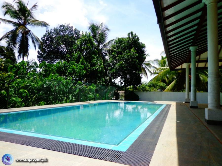 Sn property developers for Large swimming pools for sale