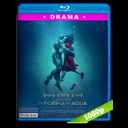 La forma del agua (2017) BRRip 1080p Audio Dual Latino-Ingles