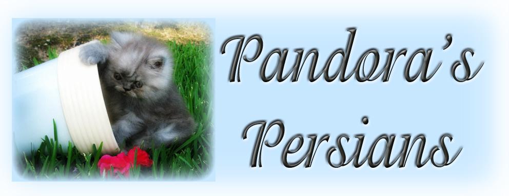 Pandora's Persians