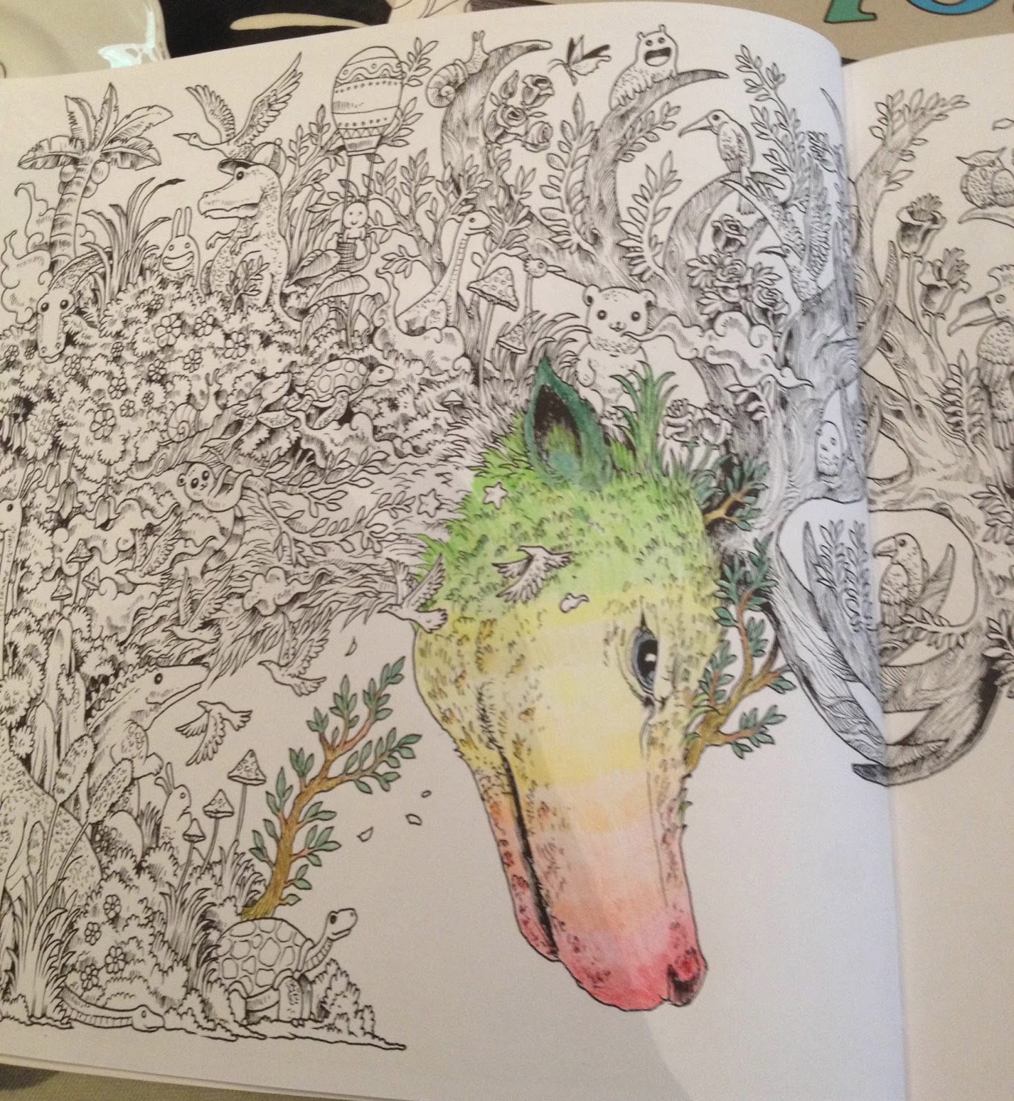 Off The Shelf Books Animorphia Adult Colouring Book By