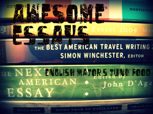Awesome Essays: A Field of Silence